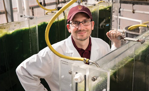 Weiss Research Lab at the Arizona Center for Algae Technology and Innovation (AzCATI)